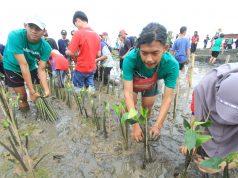 TANAM BIBIT : Terlihat sebagian generasi muda milenial antuasias menaman bibit mangrove di pesisir pantai Mangkang, Mangunharjo Semarang. Foto : DWI SAMBODO/JATENG POS.