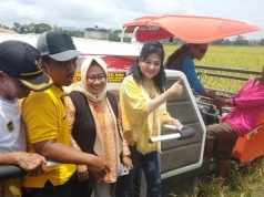 DPR dan Ditjen PSP Panen Raya Padi Sehat di Klaten