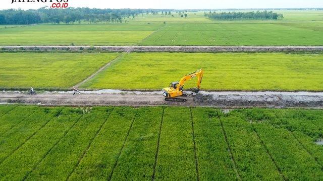 Kementan Imbau Daerah Pertahankan Sawah Atau DAK Pertanian Ditinjau Ulang