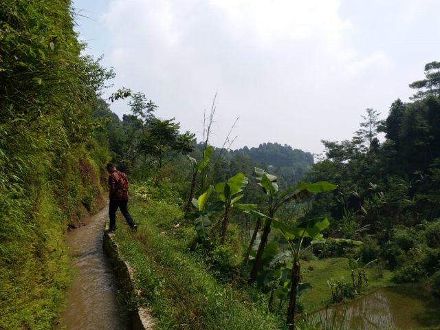Bandung Barat Dapat Alokasi Kegiatan RJIT 1.000 Ha