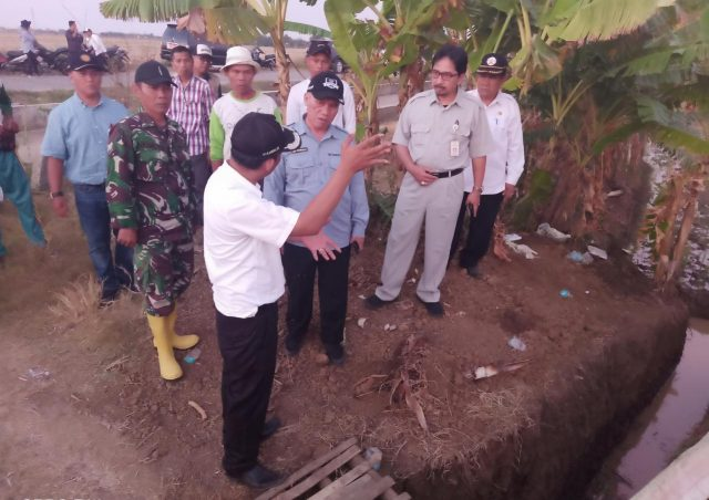 Alami Puso, Sejumlah Petani Jateng Mulai Ajukan Klaim Asuransi